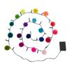 Rainbow Pom Pom Fairy Light Chain 4