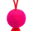 Small Pom Tassel Decorations 7