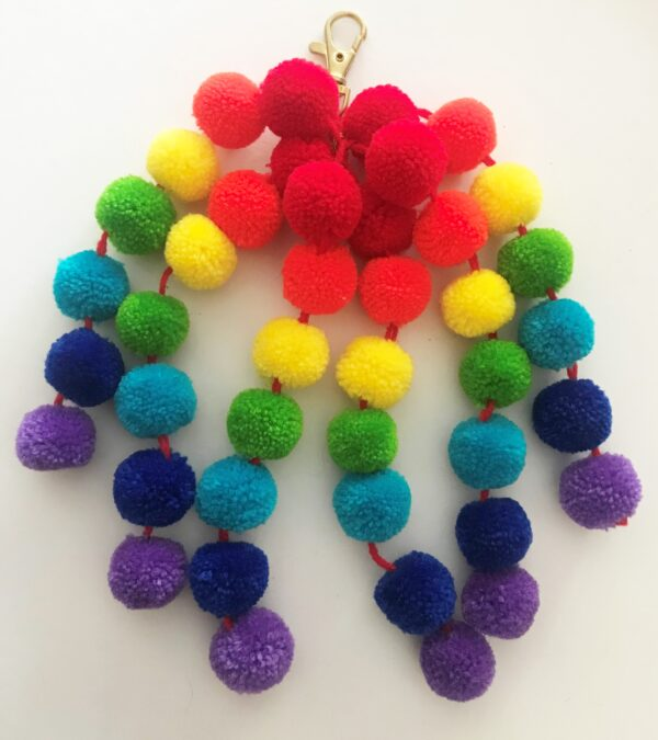 Rainbow Poms with small clips 2